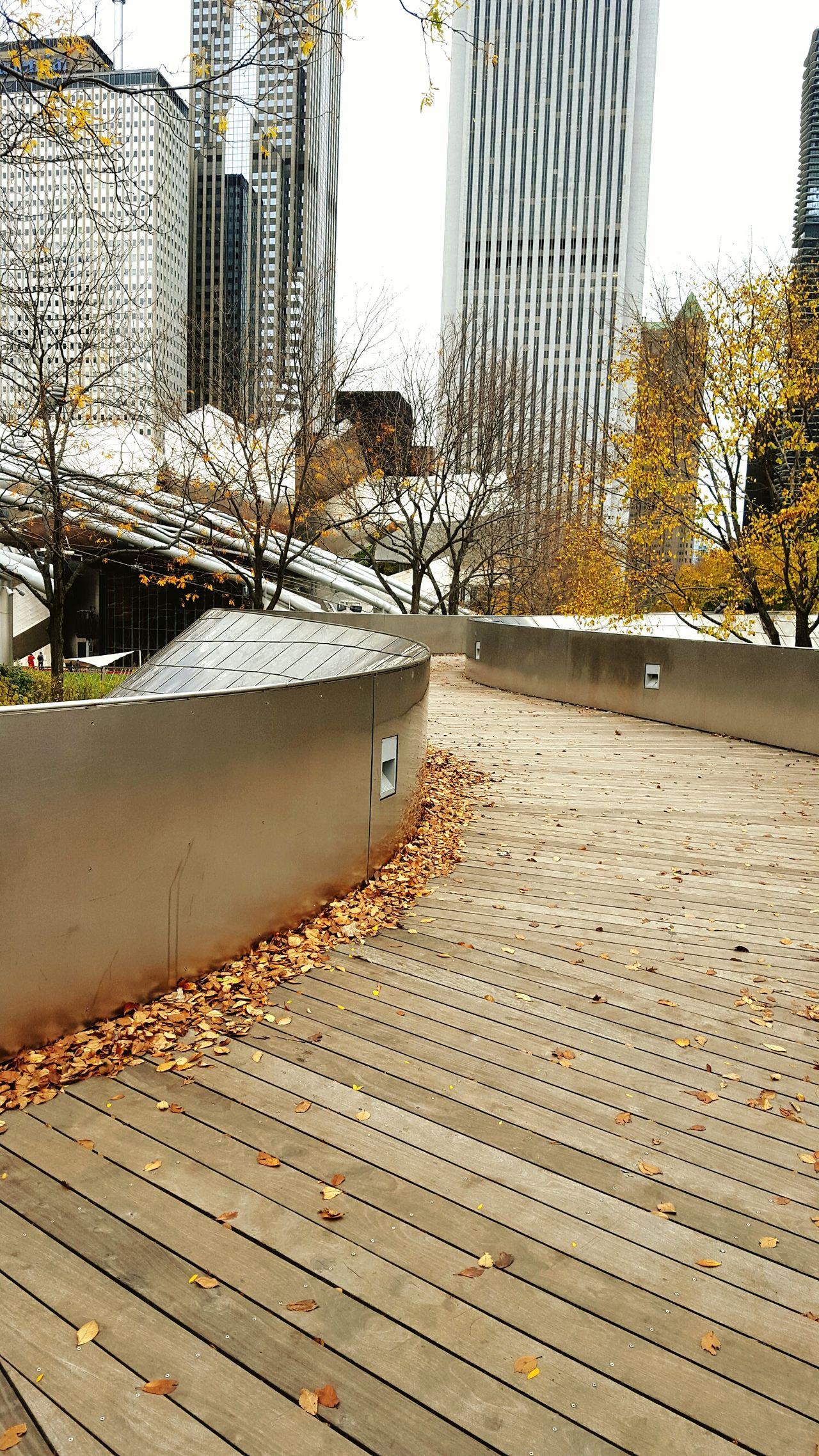 Taking Photos Chicago Bpbridge Millenniumpark Check This Out Hello World