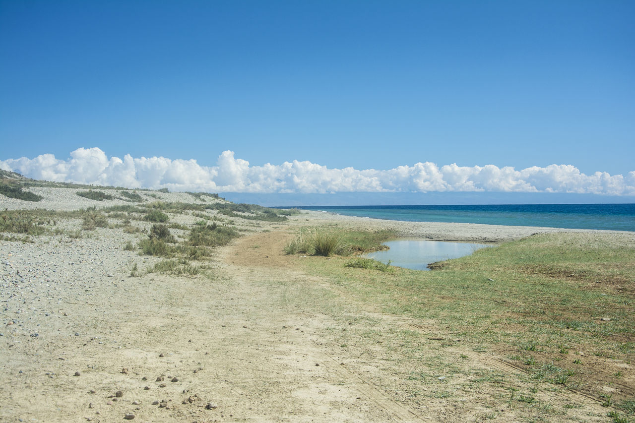 nature, scenics, sea, sky, tranquil scene, beauty in nature, tranquility, water, day, landscape, outdoors, no people, grass, beach, horizon over water