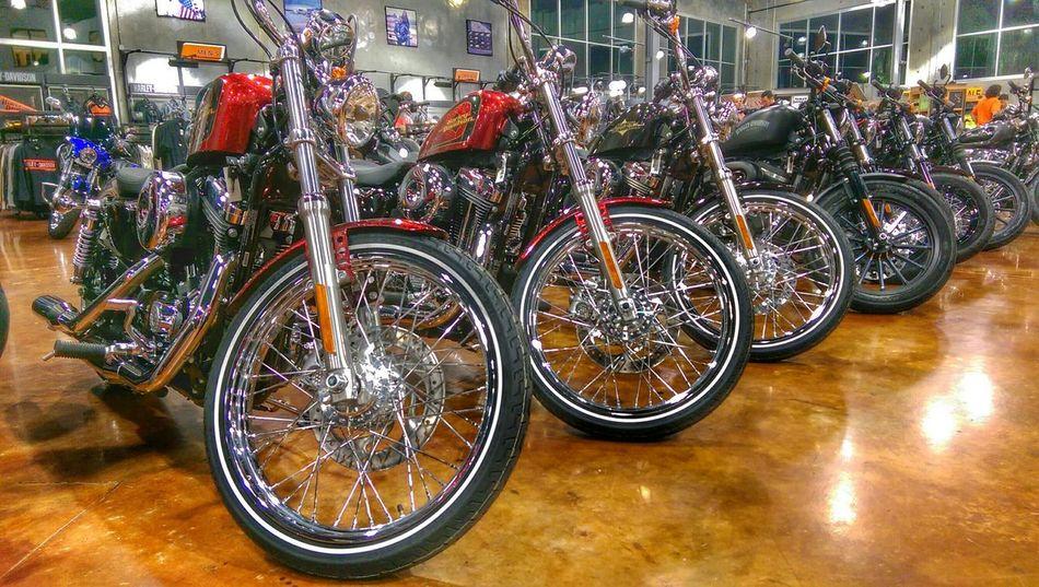 Seminole Harley Davidson Oneography Htconem8 Hdr_Collection Harleydavidson Motorcycles Harley Davidson Chrome Motorcycle