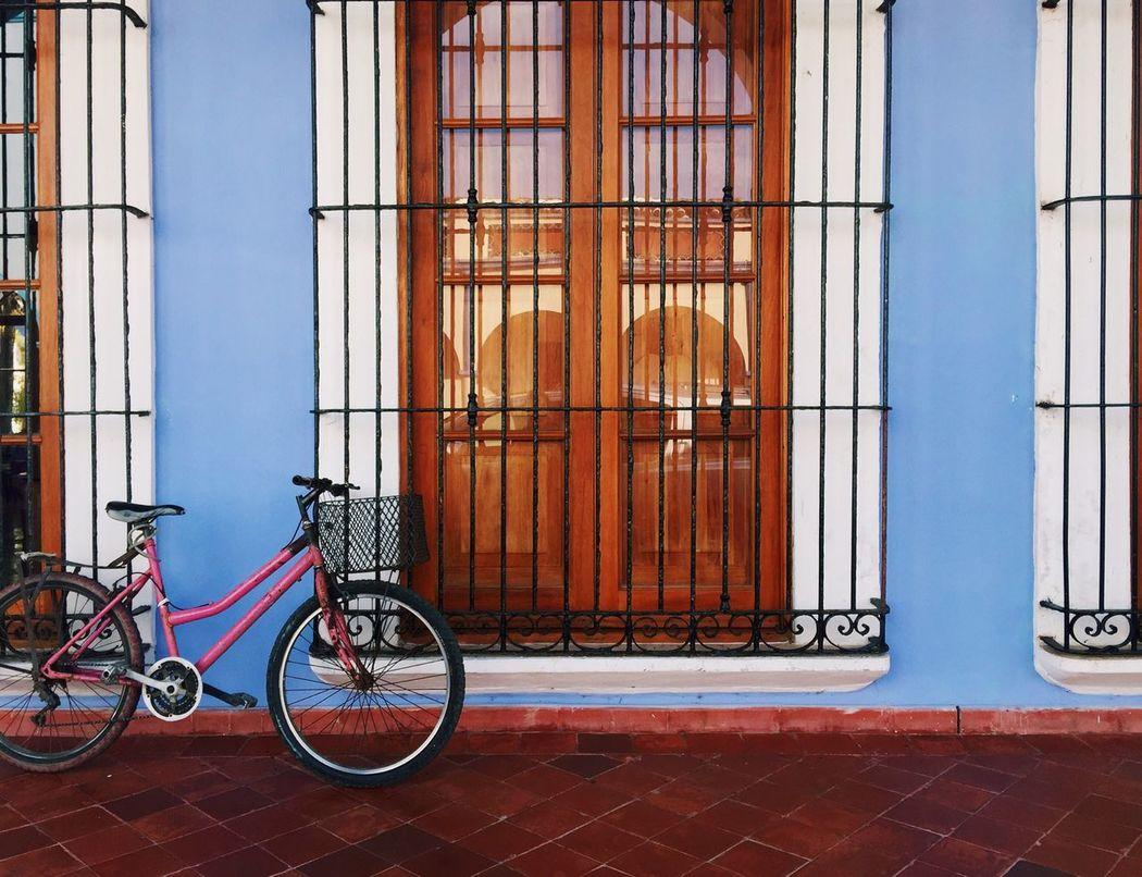 Bike Colors Window My Favorite Place