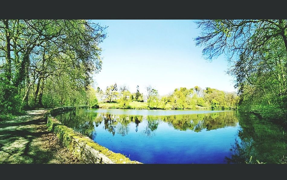 Spring time 🌿🏵️ First Eyeem Photo Reflection Water Lake Tree Scenics Nature Tranquility Tranquil Scene Outdoors Beauty In Nature Sky Day No People Blue Rural Scene France🇫🇷 Freshness EyeEmNewHere Growth Lovetakingphotos Naturelovers Skyblue Week On Eyeem Instalike Panoramic Landscape