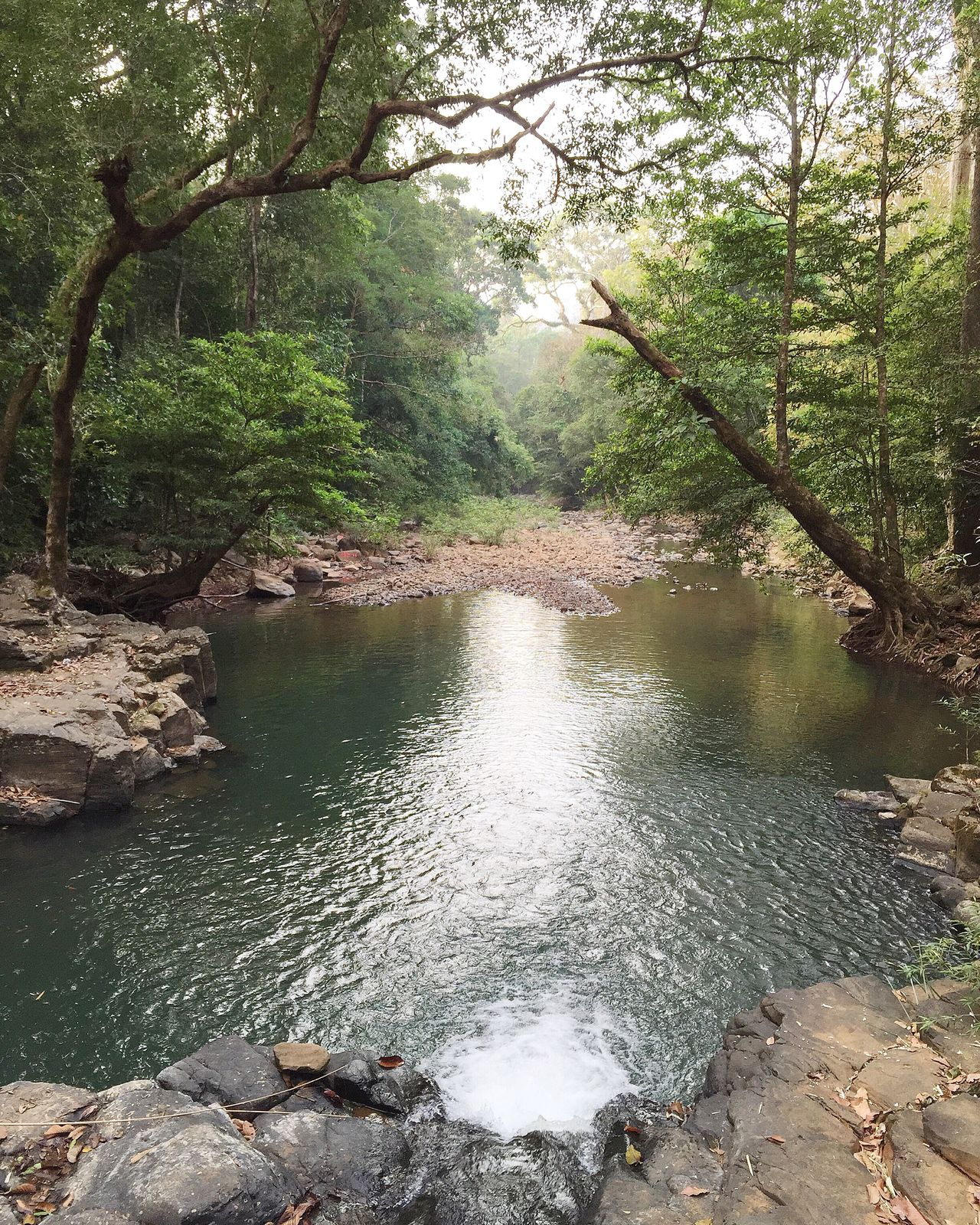 Bugiamap Nationalpark Vietnam Trip Traveling Stream Trees Lake Camping Trekking Forest Nature Backpacking Thebroadlife