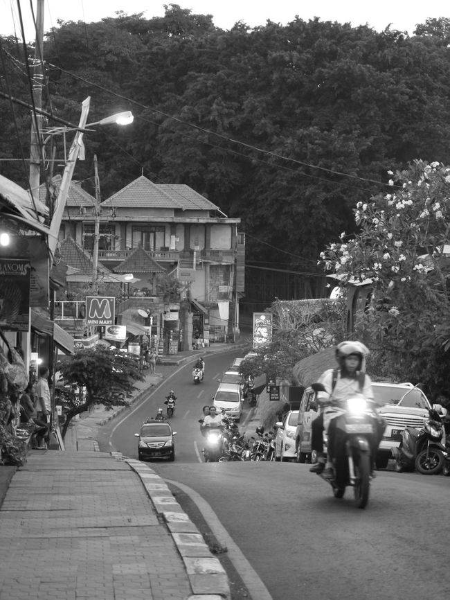 Ubud. Bali. Monkey Forest. Discover Your City Blackandwhite Monochrome Enjoying Life