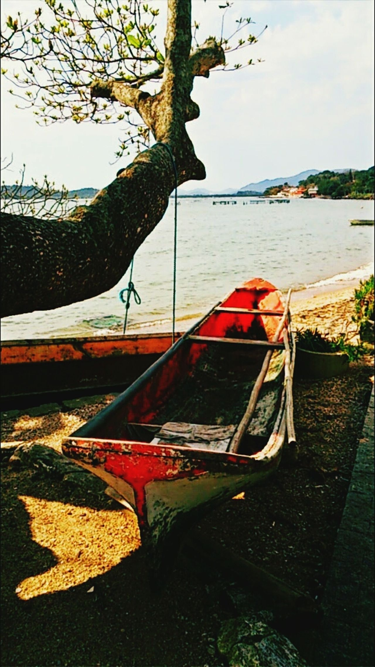 Fisherman Getting Inspired Getting In Touch Santa Catarina