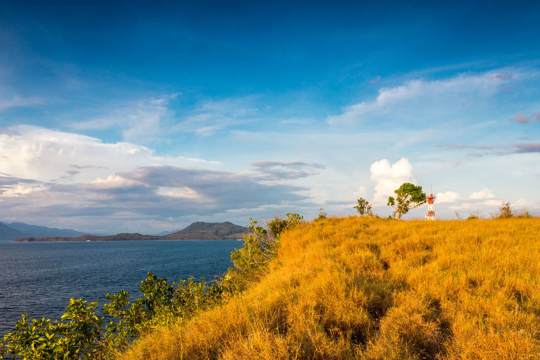 Beauty In Nature Blue Cloud Cloud - Sky Day Eyeem Philippines Flower Grass Growth Idyllic Landscape Mountain Nature No People Non-urban Scene Outdoors Philippines Plant Remote Scenics Sky Tranquil Scene Tranquility Yellow