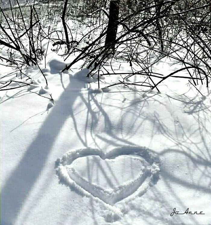 Came across a Heart that someone had drawn in the snow along my walk deep in the woods this morning 💝 Snow Covered Snow Prints Woods Snow Heartshaped Winter Wonderland Snow In The Woods EyeEm Nature Lover Nature Snow Day