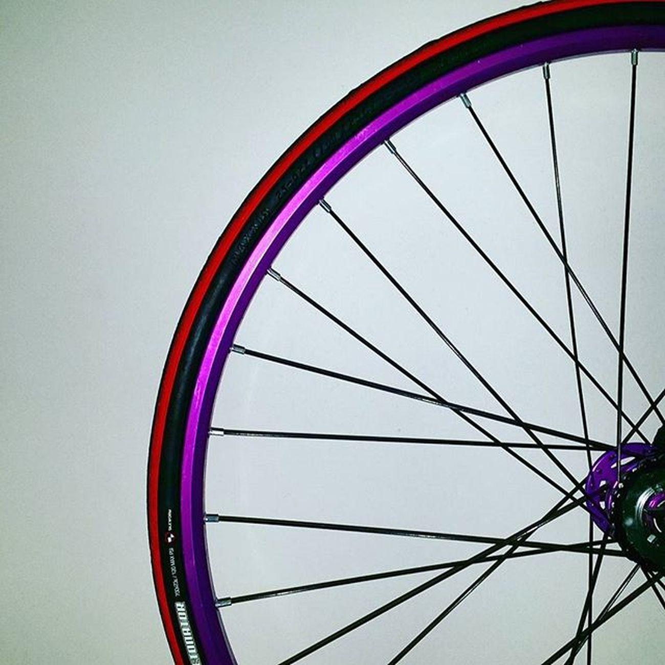 紫杉加了橙 有d唔順眼。。。😯😯😯 Bike Bikelife Fixedgear Fixedgears Fixedgearbike 紫杉醇