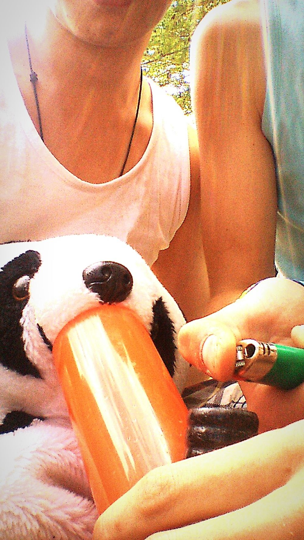 Young Wild And Free(; Démon D'or Poleymieux Panda Smoke Weed Bang Toke Chilling Festival Music