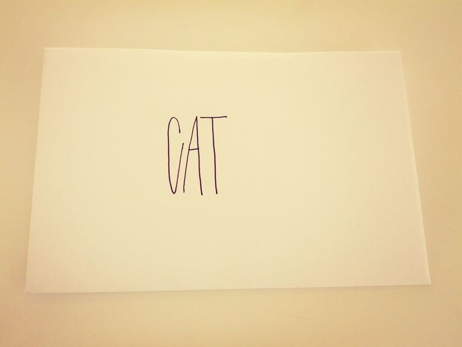 Beautiful stock photos of envelope, Berlin, Capital Letter, Cat, Communication