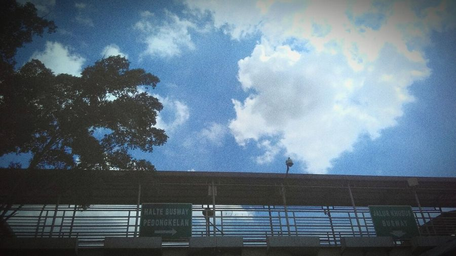 Look up the sky Jakartaphotography Jakartastreetphotography Sky And Clouds Looking Out Of The Window