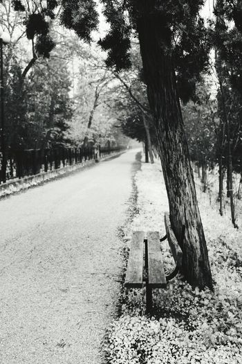 Black or white a path will show witch way