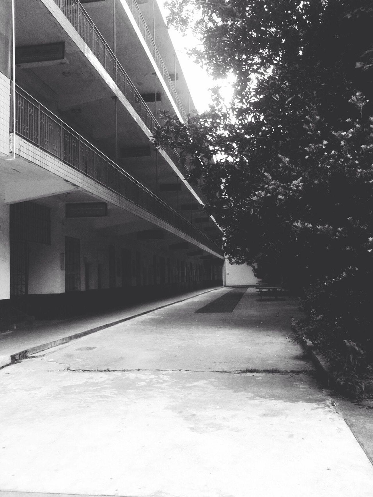 曾经的教学楼,那个有点拥挤的楼梯… Schol