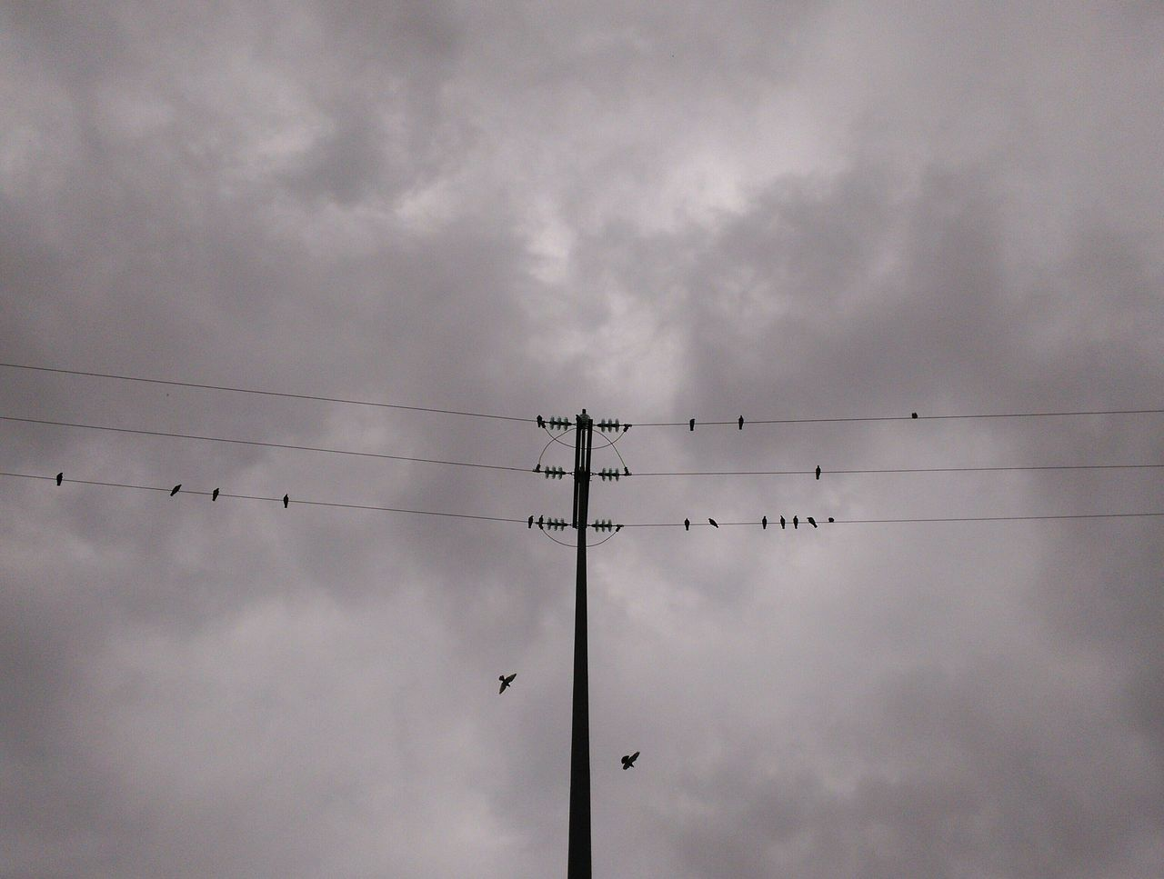 low angle view, cloud - sky, cable, connection, sky, electricity, power line, silhouette, power supply, technology, day, no people, bird, outdoors, electricity pylon, nature, telephone line, perching, animal themes