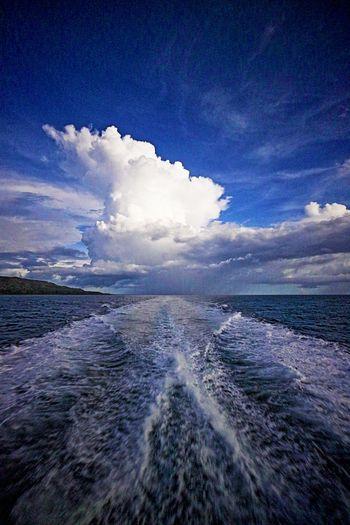Tagbilaran to Cebu Beauty In Nature Blue Cloud - Sky Cumulonimbus Day Horizon Over Water Nature No People Outdoors Scenics Sea Sky Tranquil Scene Tranquility Wake Water Waterfront Wave Tracks In The Sea Trucks The Great Outdoors - 2017 EyeEm Awards EyeEmNewHere EyeEmNewHere