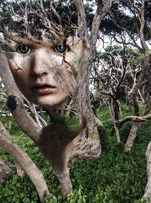 Spirits In The Woods Facial Experiments Photographic Approximation Understanding Is A First Step
