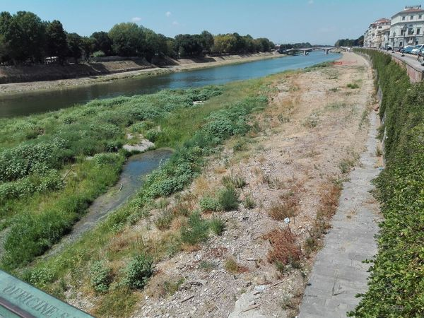 River Arno River Levees Drought Grass