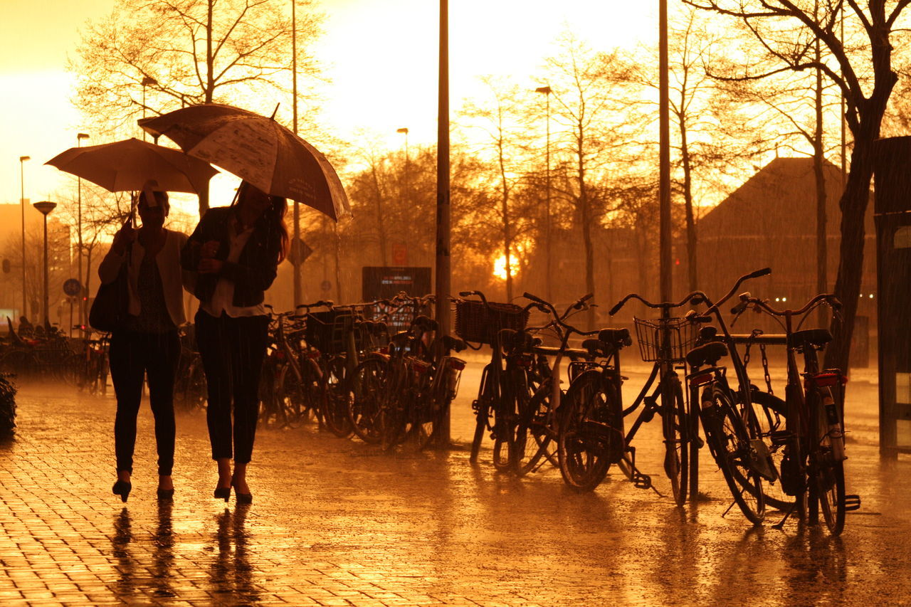 Walking under the rain with burning sky. Amsterdam Burning Sky Bycicles Laddies No Filter, No Edit, Just Photography Rainy Day Red Sky Sunset Sunset Stormy Day Umbrella Walk On Rain