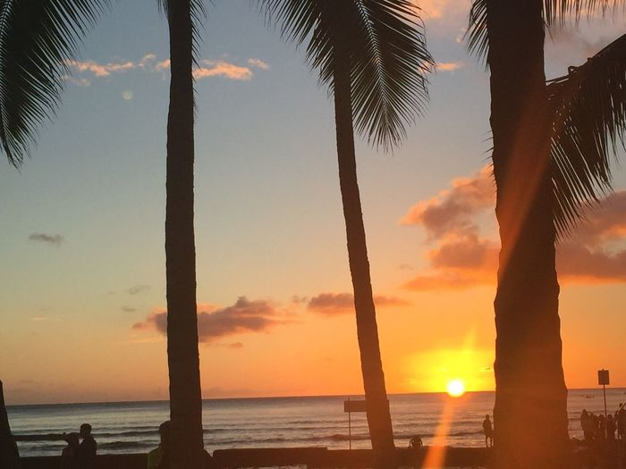 Sunset Waikiki Beach Oahu, Hawaii People Silhouettes Palm Tree Sea Sky Sun Orange Color Horizon Over Water Oahu / Hawaii Hawaiian Islands Tropics Tropical Tropical Paradise Beach Oahu The Week On EyeEm Paint The Town Yellow Been There. Lost In The Landscape Second Acts Island Of Oahu, Hawaii Perspectives On Nature An Eye For Travel