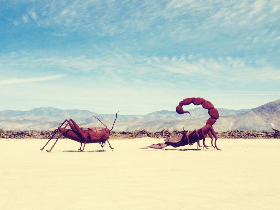 Beautiful stock photos of scorpion, Animal Representation, Art, Art And Craft, Beauty In Nature
