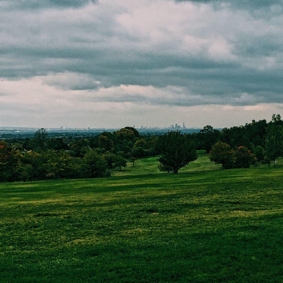 London Skyline Epsom Epsom Downs Countryside Green