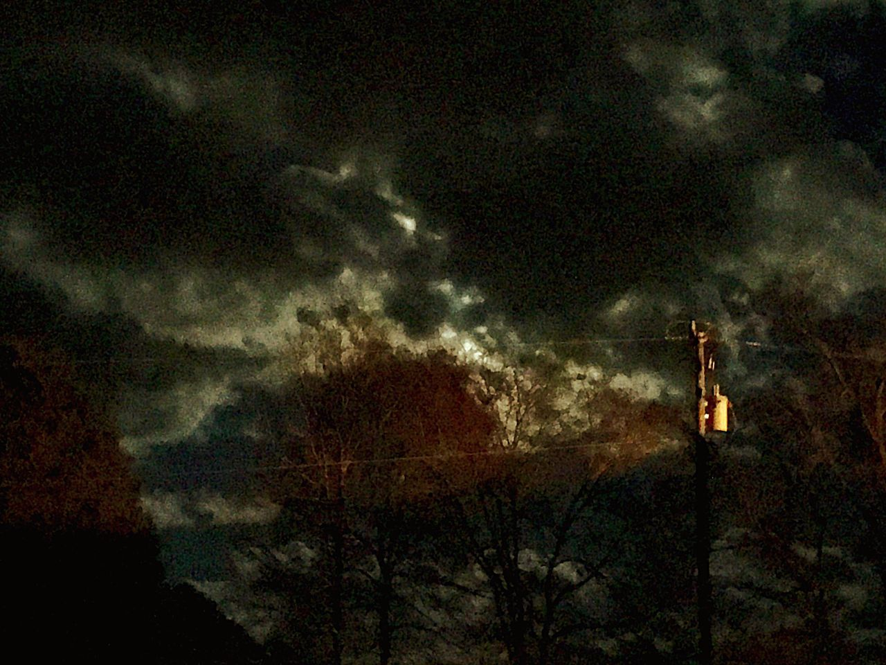 sky, cloud - sky, silhouette, night, nature, tree, outdoors, no people, low angle view, beauty in nature