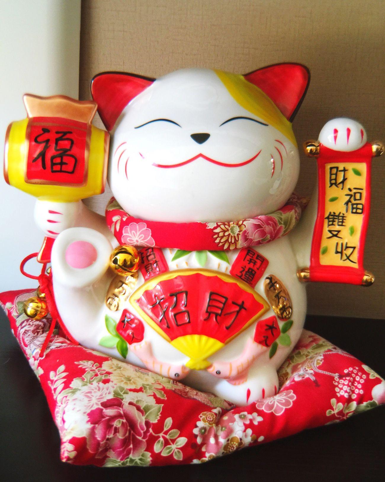 招财猫 Lucky Cat Cat Cats Cat♡ Eyeemphotography Color Photography Kitty Lucky 招き猫