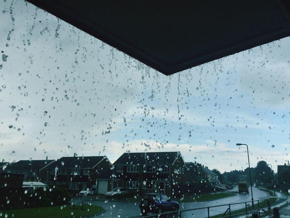 Downpour Rain Storm Suburban Droplets