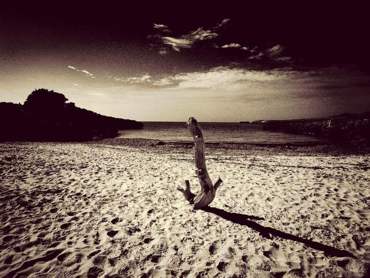 Blackandwhite Landscape Monochrome Beach
