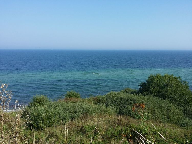 Sea Horizon Over Water Water Tranquil Scene Scenics Tranquility Blue Beauty In Nature Plant Idyllic Nature Clear Sky Remote Non-urban Scene Growth Calm Seascape Day Shore Outdoors