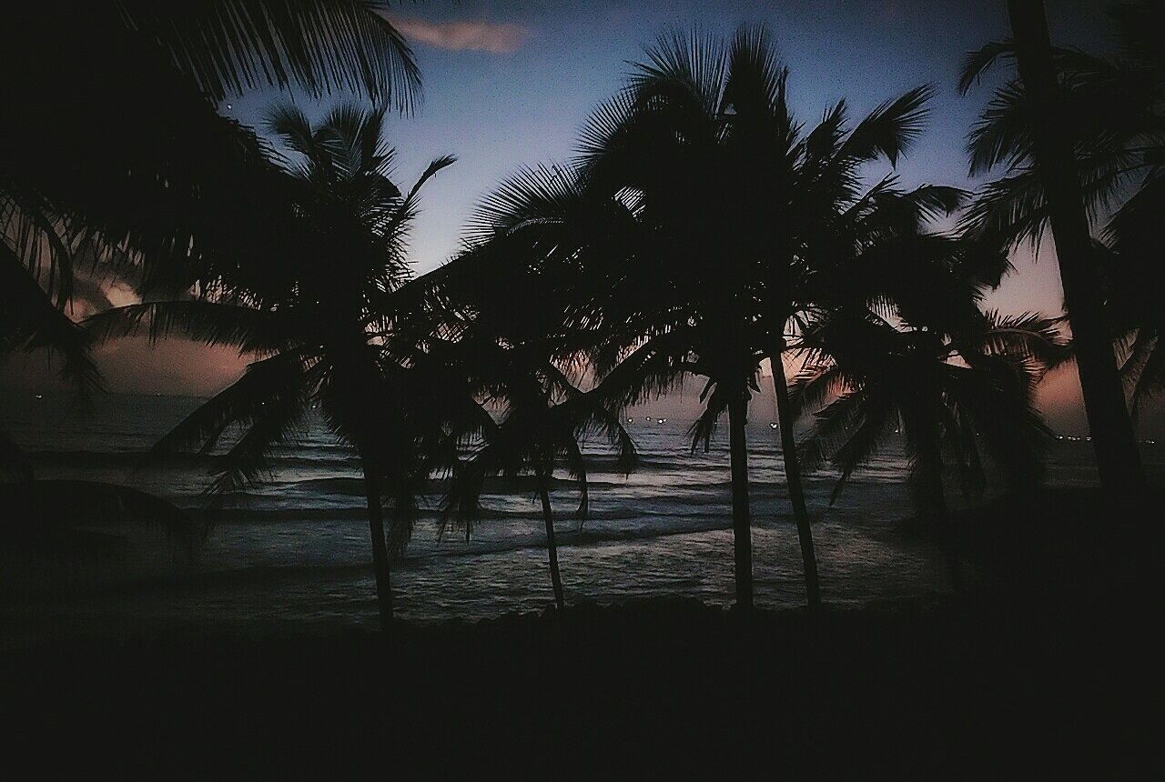 The beach at night Varkala Beachatnight Beautiful View Waves, Ocean, Nature Beauty In Nature Tranquility First Eyeem Photo Outdoors Peaceful Scenics Beautiful Nature Nature Tree Tranquil Scene Nature Photography Water Beach Nightphotography Landscape Black Dusk Sky Dusk Beautiful Sky Beautiful