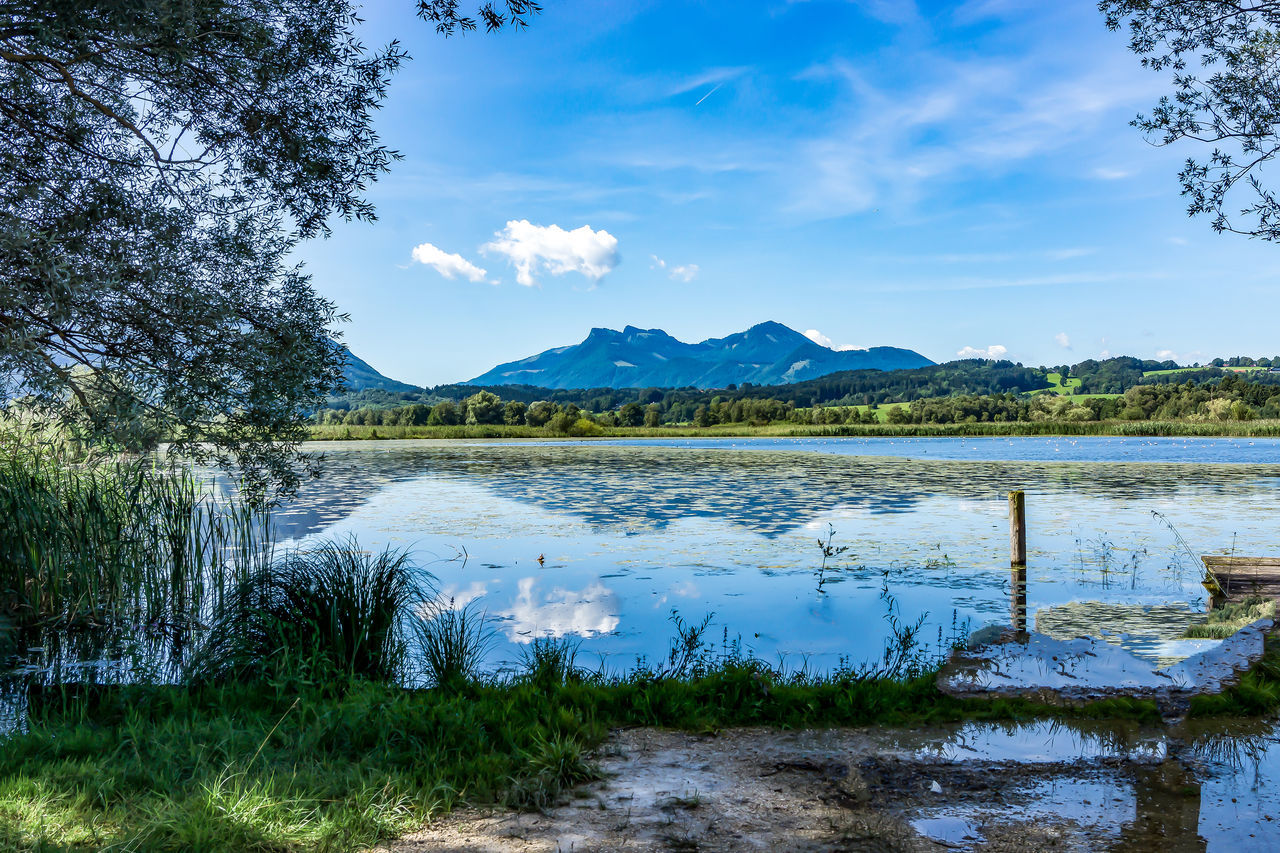 Lake and Mountain Beauty In Nature Blue Cloud - Sky Day Grass Growth Lake Landscape Mountain Mountain Range Nature No People Outdoors Remote Scenics Sky Tranquil Scene Tranquility Tree Water
