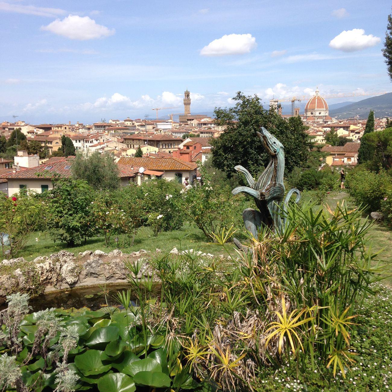 Una vista distinta de Florencia Gardening sculpture