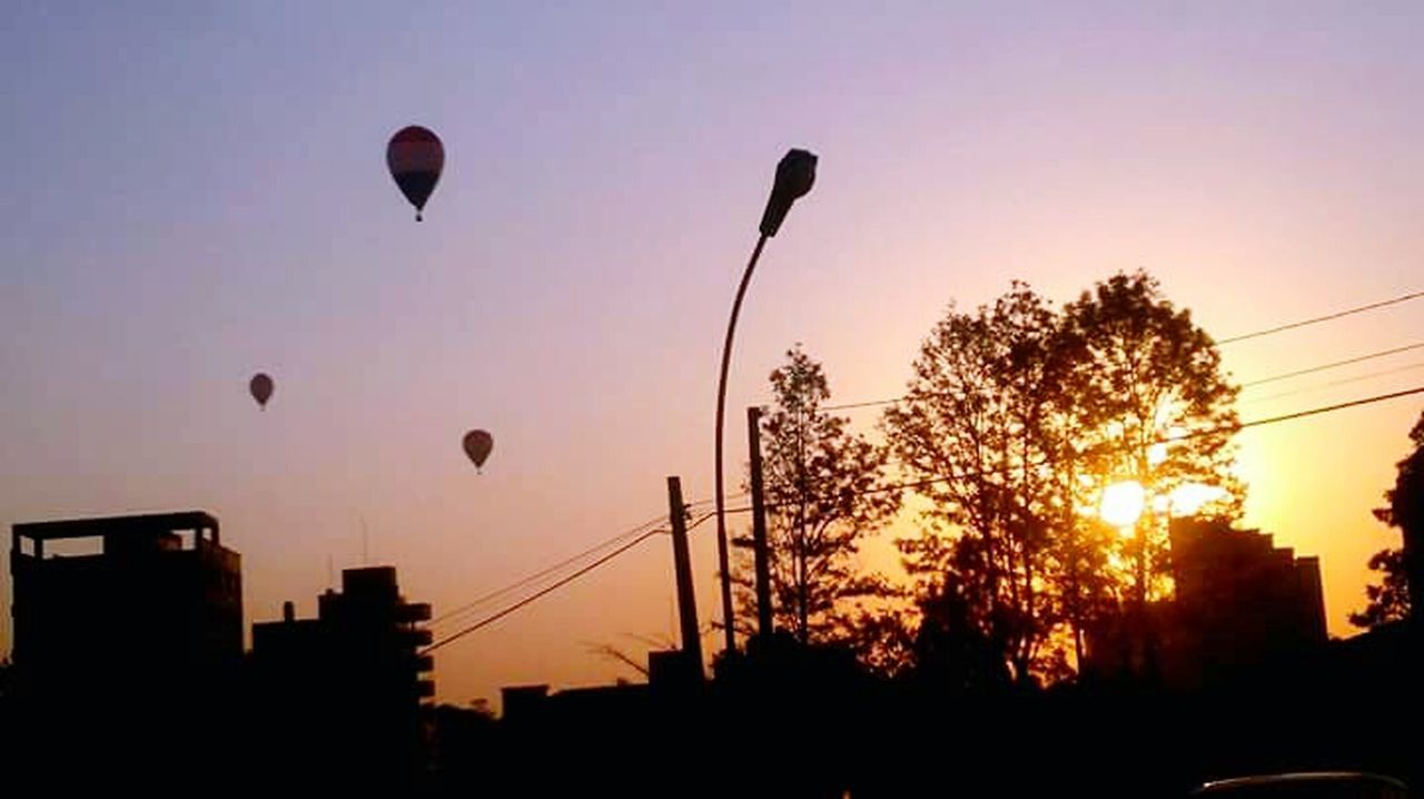 silhouette, sunset, tree, no people, sky, hot air balloon, nature, flying, outdoors, city, architecture, day