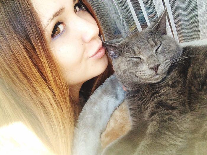 Greycat Sweet♡ Kitten 🐱 Bella Ragazza I Love My Cat