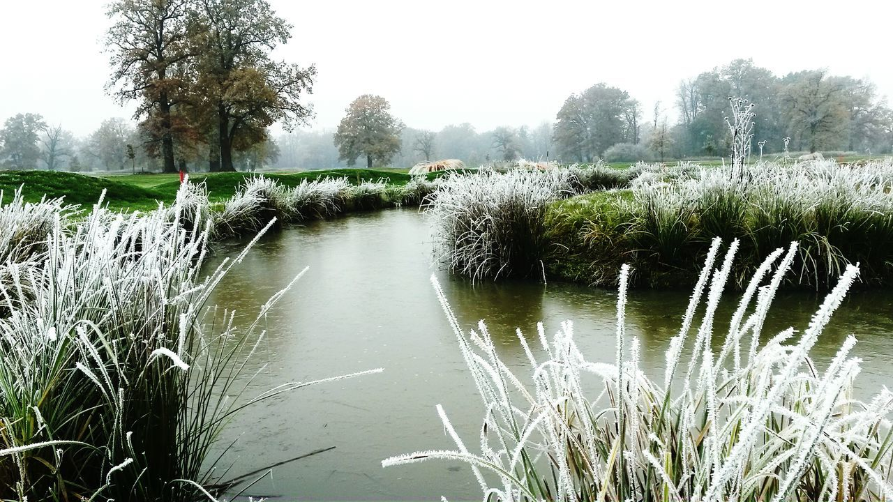 Taking Photos Hello World Relaxing Nature Wintercomes Green BRRRR ❄️