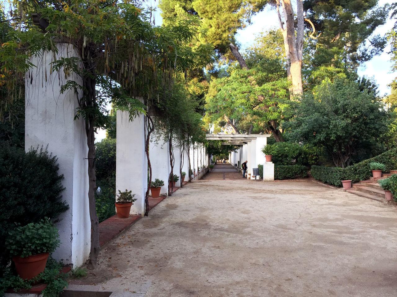 Barcelona Bcn Montjuic Nature Park Pergola Romantic SPAIN