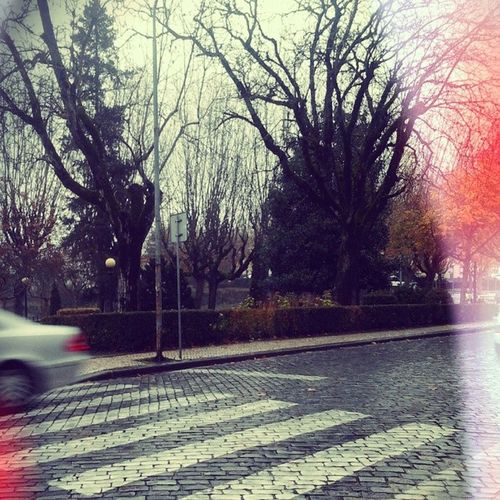 Whispering: Morning, keep the streets empty for me Feverray Music Morning Cold Rain Viseu Manhã Chuva Frio
