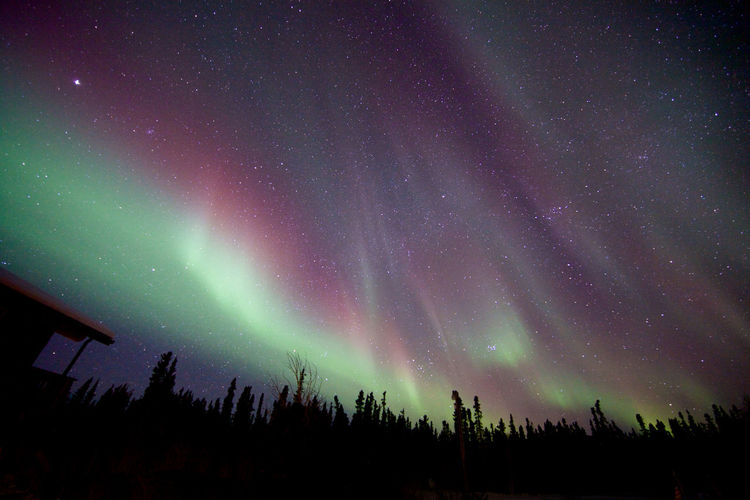 Astronomy Aurora Aurora Borealis Beauty In Nature Constellation Galaxy Infinity Light Natural Phenomenon Nature Nature Photography Nature_collection Night Night Sky Nightphotography Northern Lights Sky Sky_collection Space Space Exploration Star Star - Space Star Field Tranquil Scene Tranquility