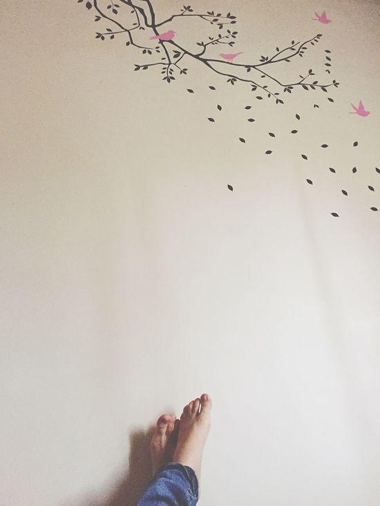 Relax. Relaxing Enjoying Life Feet Relax Wall
