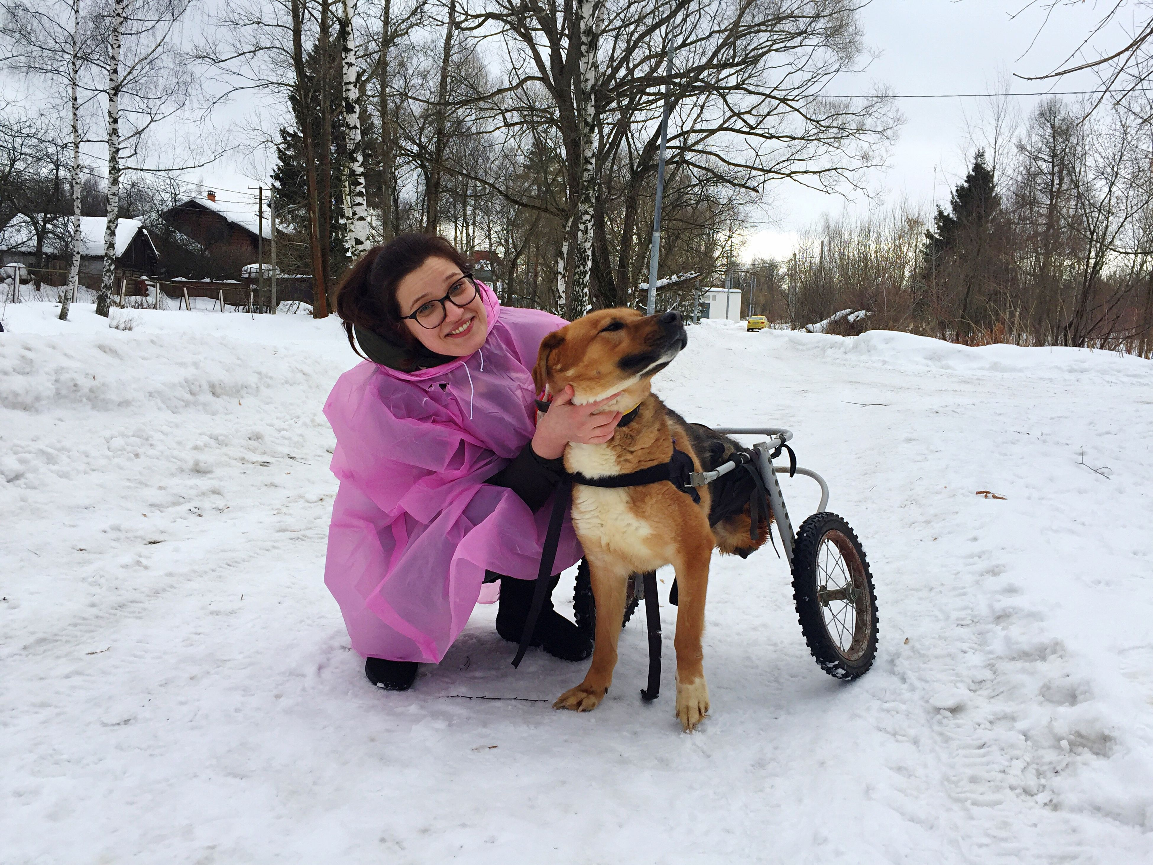 dog, pets, full length, one animal, friendship, animal themes, domestic animals, loyalty, cold temperature, leisure activity, pink color, people, sitting, tree, winter, snow, day, bonding, eyeglasses, outdoors, nature, mammal, adults only, adult