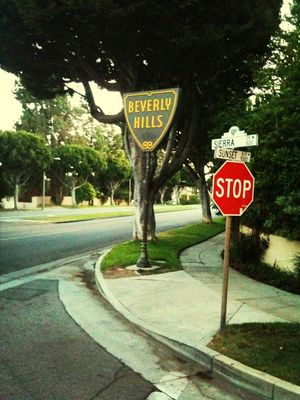 Relaxing at Beverly Hills Sign by rachelguck