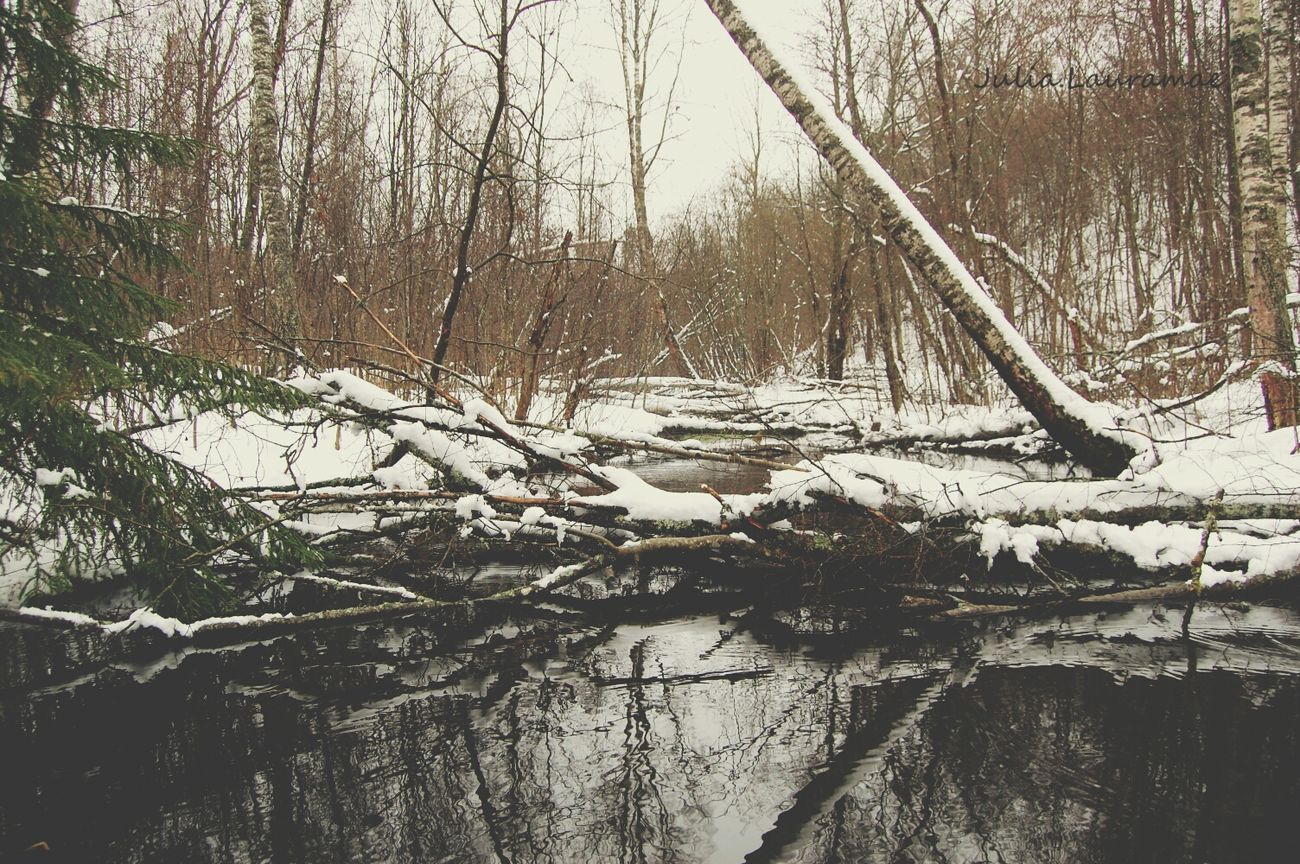 EyeEm Nature Lover Sweden Water Reflections Snow