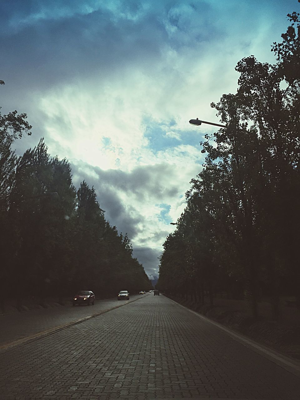 tree, the way forward, transportation, road, sky, car, cloud - sky, land vehicle, street, mode of transport, outdoors, day, no people, nature
