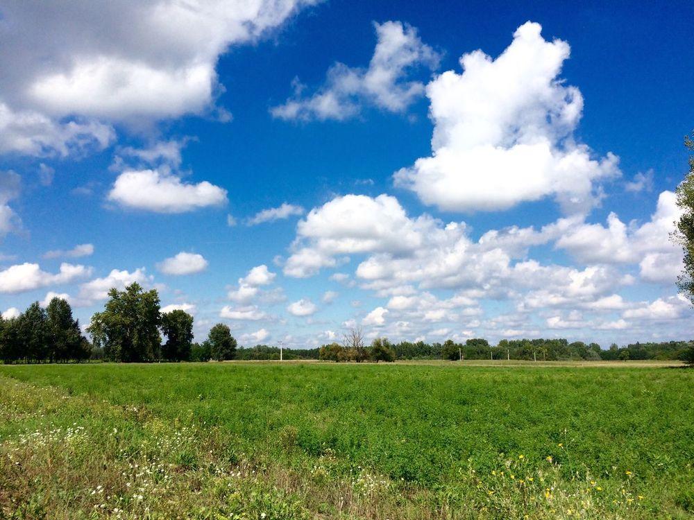 Kiskunhalas Green Blue Skyporn Clouds And Sky Clouds Nuvole Alfold Pianura Hungary Ungheria Magyarország