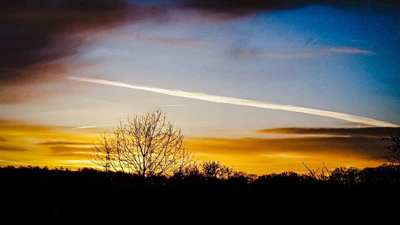 silhouette, sunset, tree, beauty in nature, majestic, nature, scenics, tranquil scene, tranquility, vapor trail, landscape, sky, no people, outdoors, bare tree, contrail, day