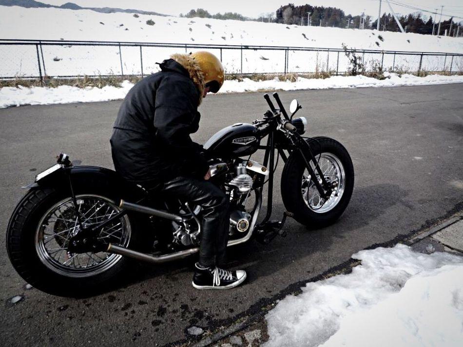 Harleydavidson Harley Davidson Harley Harley-Davidson Motorcycles Motorcycle Shovelhead Shovel ハーレー ハーレダビッドソン バイク Japan First Eyeem Photo