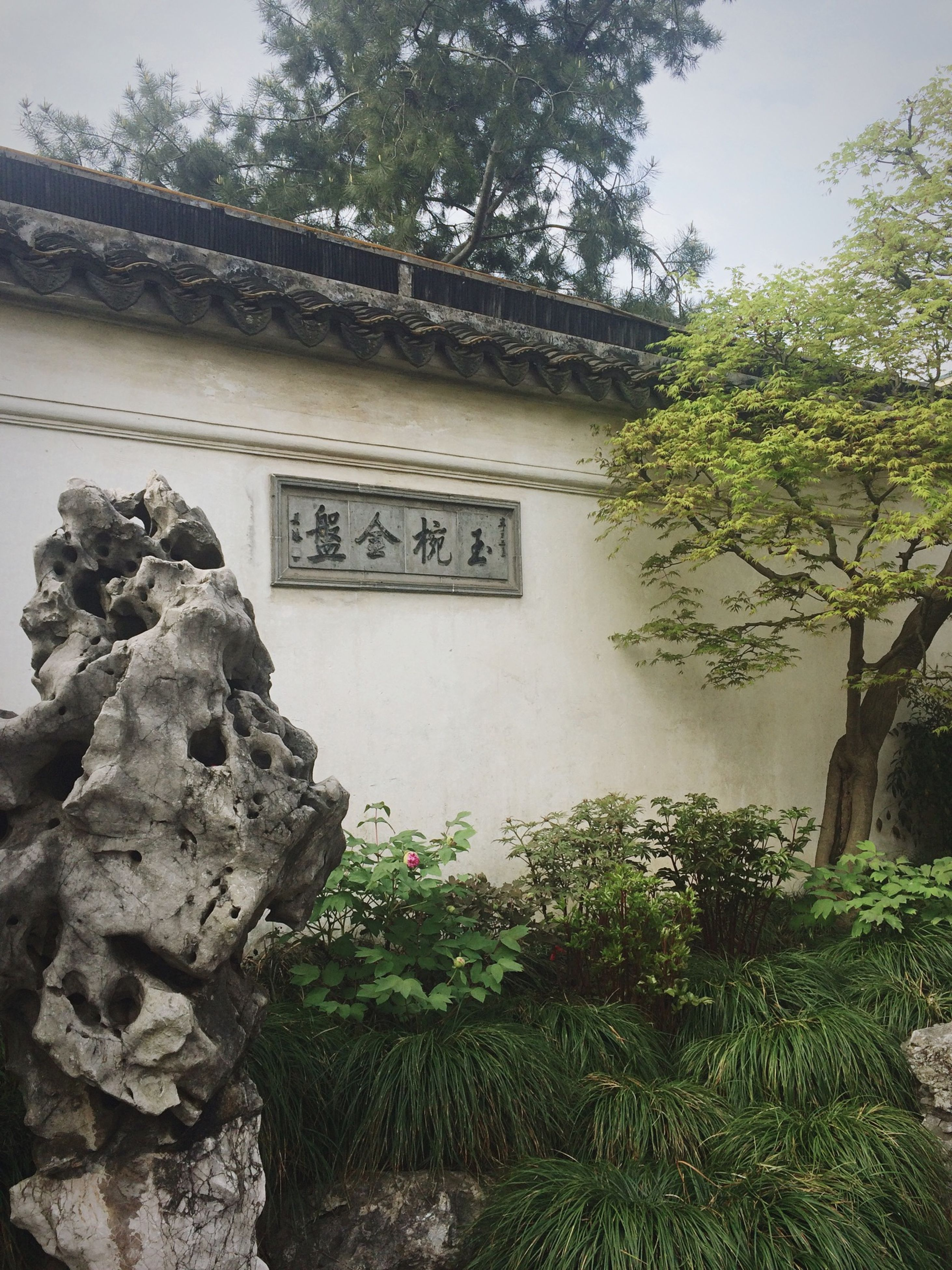 text, western script, plant, built structure, tree, architecture, growth, communication, day, wall - building feature, no people, outdoors, green color, non-western script, nature, building exterior, sunlight, low angle view, old, rock - object