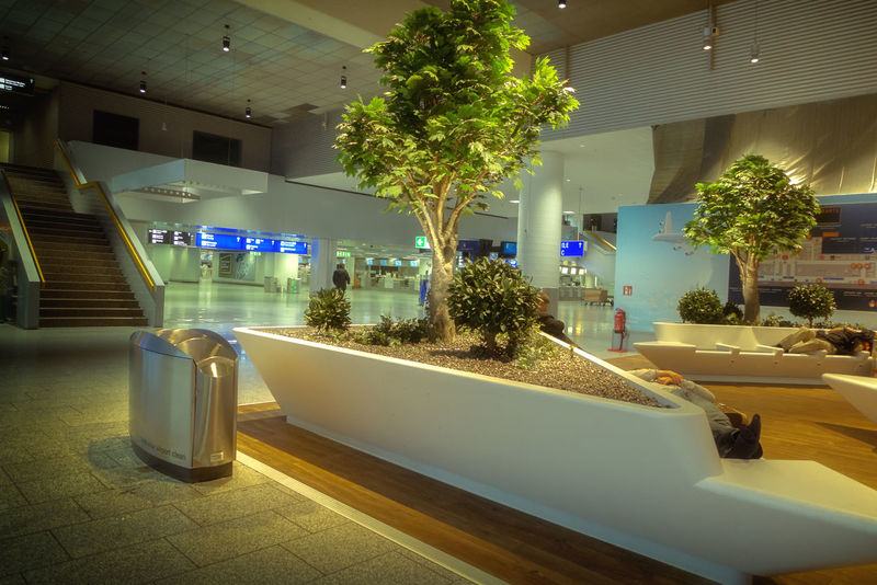 the airport in Frankfurt Airport, Airlines, Terminal, Travel, Hobby Airport, Houston, Texas, Southwest Airlines, International Travel, Frankfurt Am Main Architecture Built Structure Day Fraport Illuminated Indoors  Luxury No People Tree