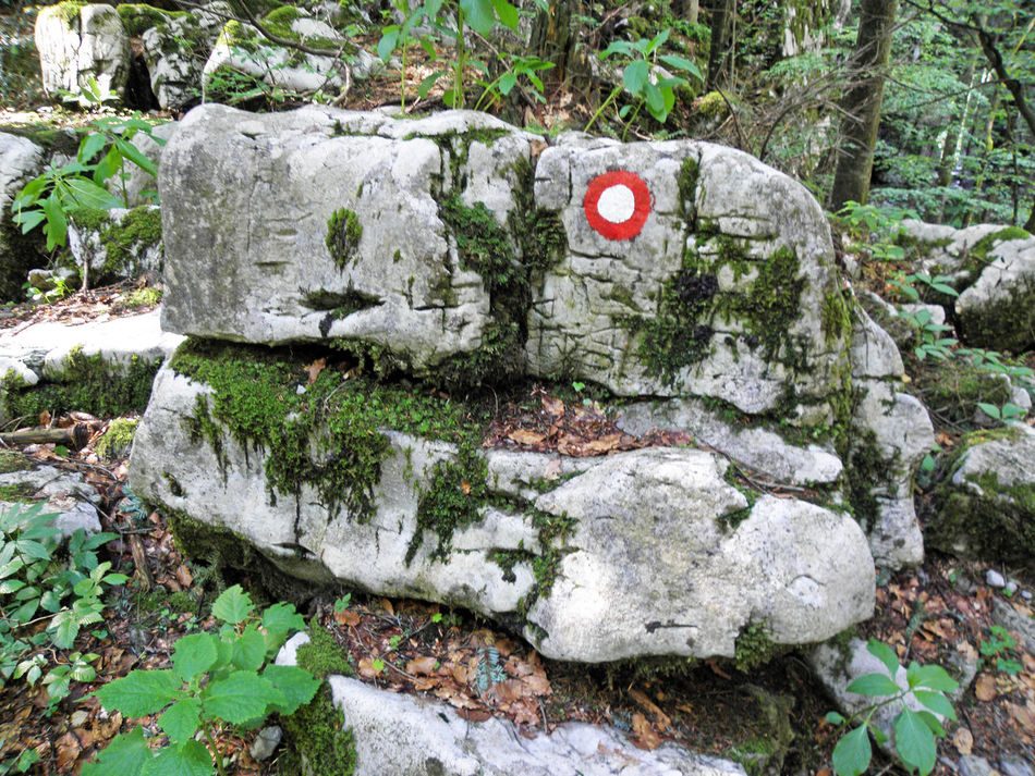 Golubinjak,Gorski kotar,nature details,Croatia,Europe,9 Adventure Climbing Close-up Croatia Day Eu Europe Forest Golubinjak Gorski Kotar Marcation Moss Nature Nature No People Outdoors Relaxation Rock - Object Rocks Sign Tracking Tree