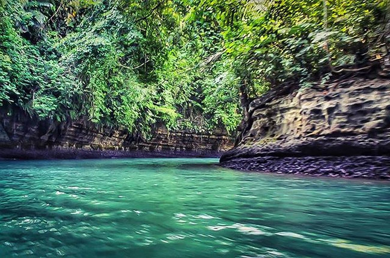 Masih edisi sayang dibuang River Greencanyon  Nature Natural Exploreindonesia Panorama Landscape Tree Indonesian Instalike Instaeurope Water Beutiful  Latepost Greatview Explore